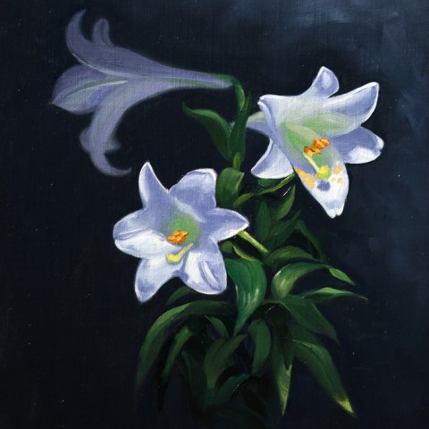 Title: White Lillies, Medium: Oil on linen, Size: h 40cm x w 30cm, available